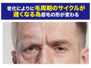 加齢で眉毛の形が変わるって本当?