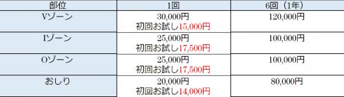 ハロス(Haloss)料金表・VIO