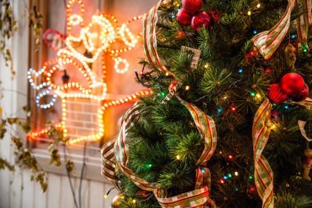 クリスマス デートスポット