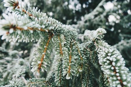 冬は保温性が高いもの