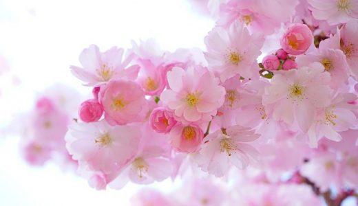 春日井のホワイトニングおすすめ人気ランキング20選