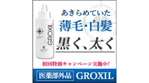 ②白髪用×育毛剤:グロシキル
